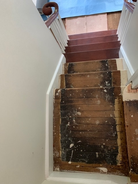 1 Carpetrends Projects Stairs Carpet Replacement