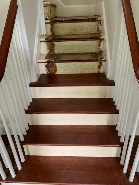 4 Carpetrends Projects Stairs Carpet Replacement
